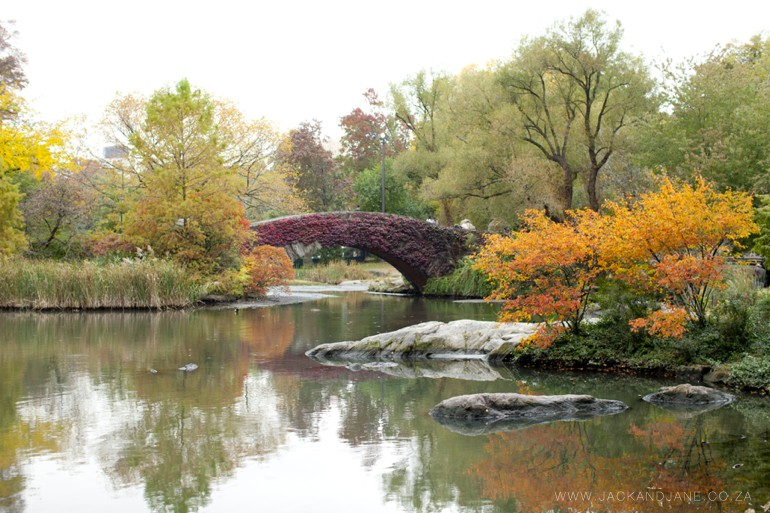 Jack and Jane - Travel - New York - Central Park_0004